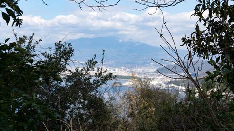 淡島山頂から見た沼津市街地方面