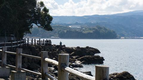 淡島の南西側からみた長井崎