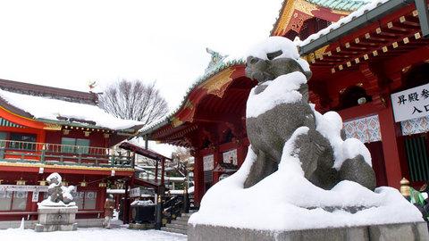雪をかぶった狛犬様